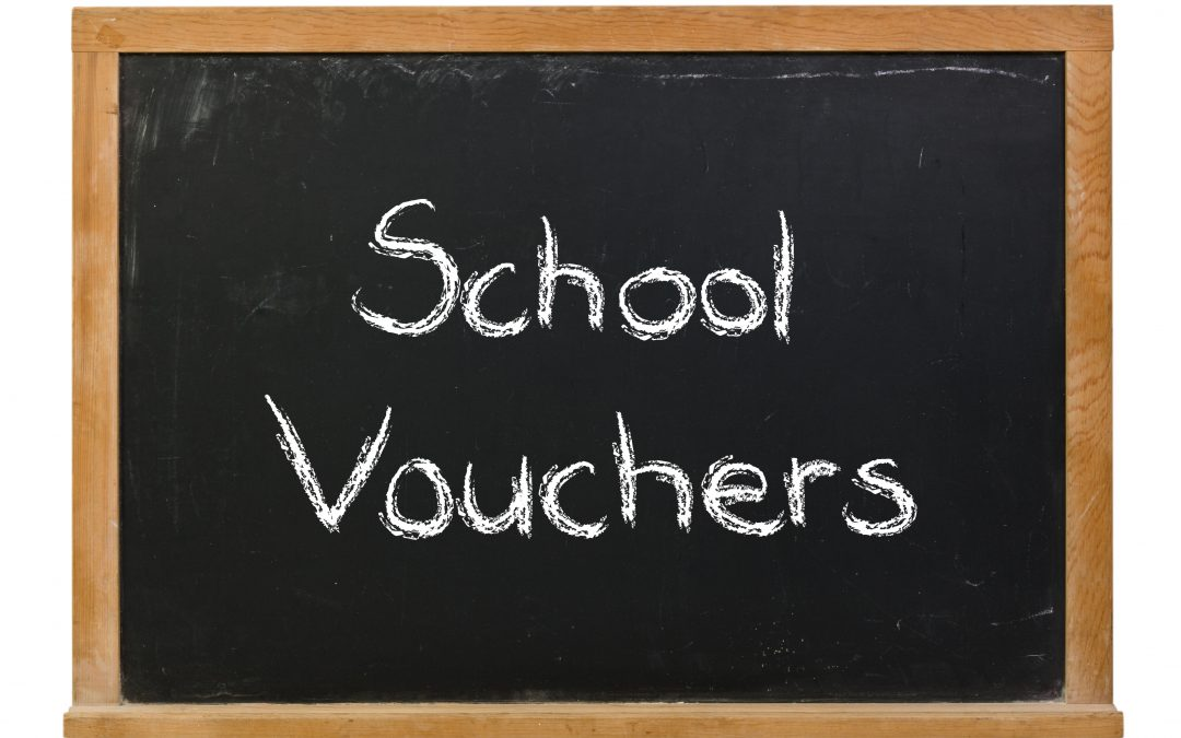 Dont Divert Taxpayer Money To Vouchers >> Are Publicly Funded Private School Vouchers Helping Low Income Kids