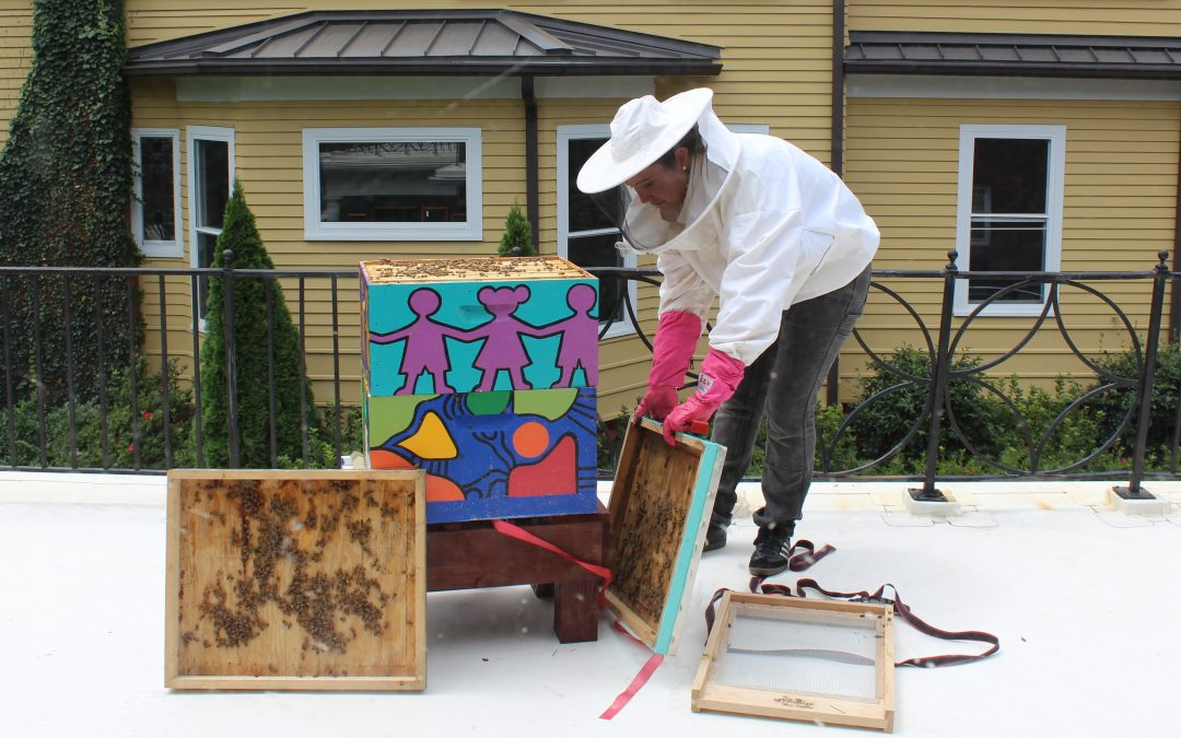 A Beehive Arrives at the Foundation